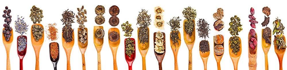 Sampling of Chinese herbs